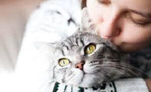 Il gatto ti ama